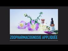 Embedded thumbnail for Découverte de la Zoopharmacognosie